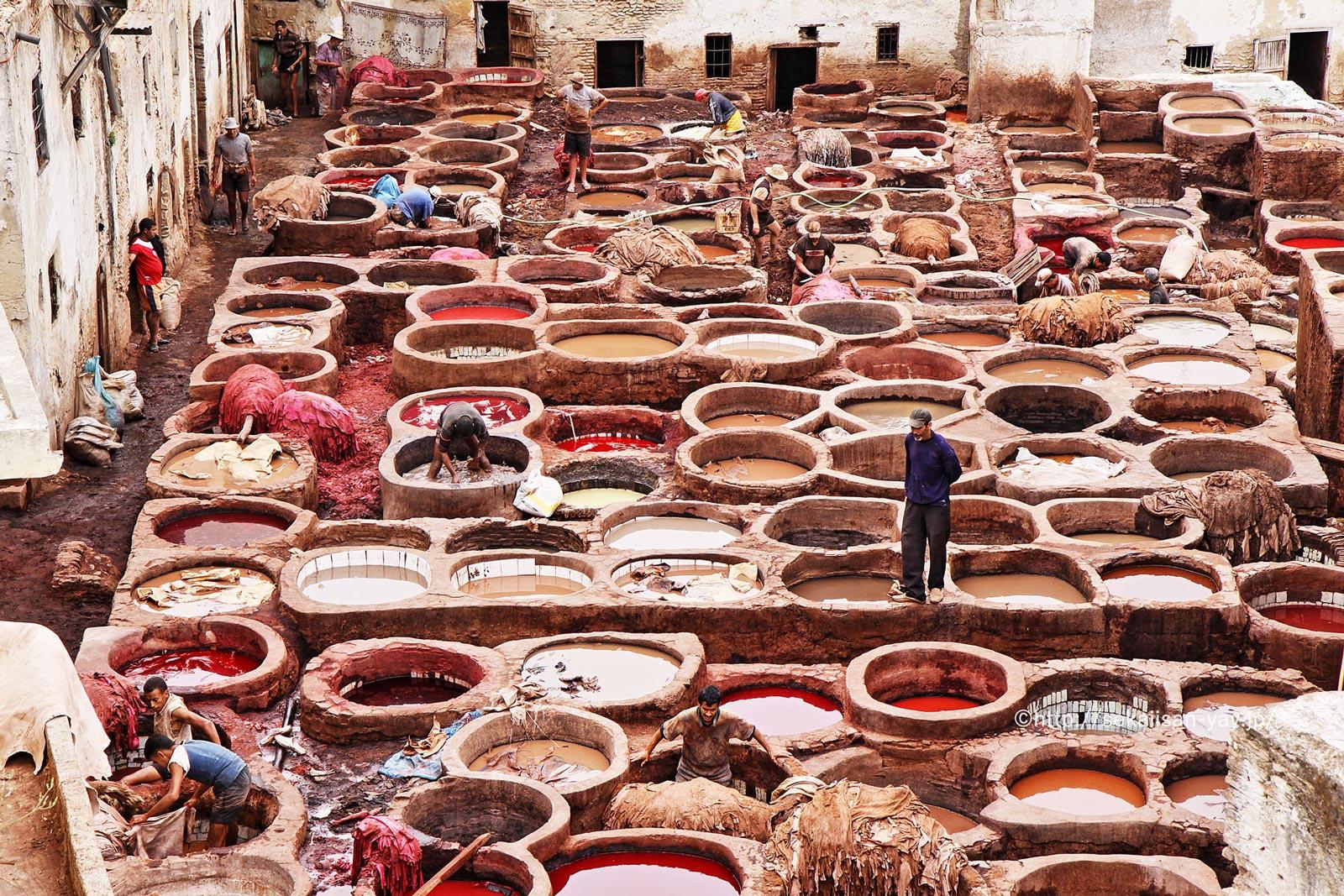 モロッコ「フェス旧市街」タンネリ(皮なめし工場)