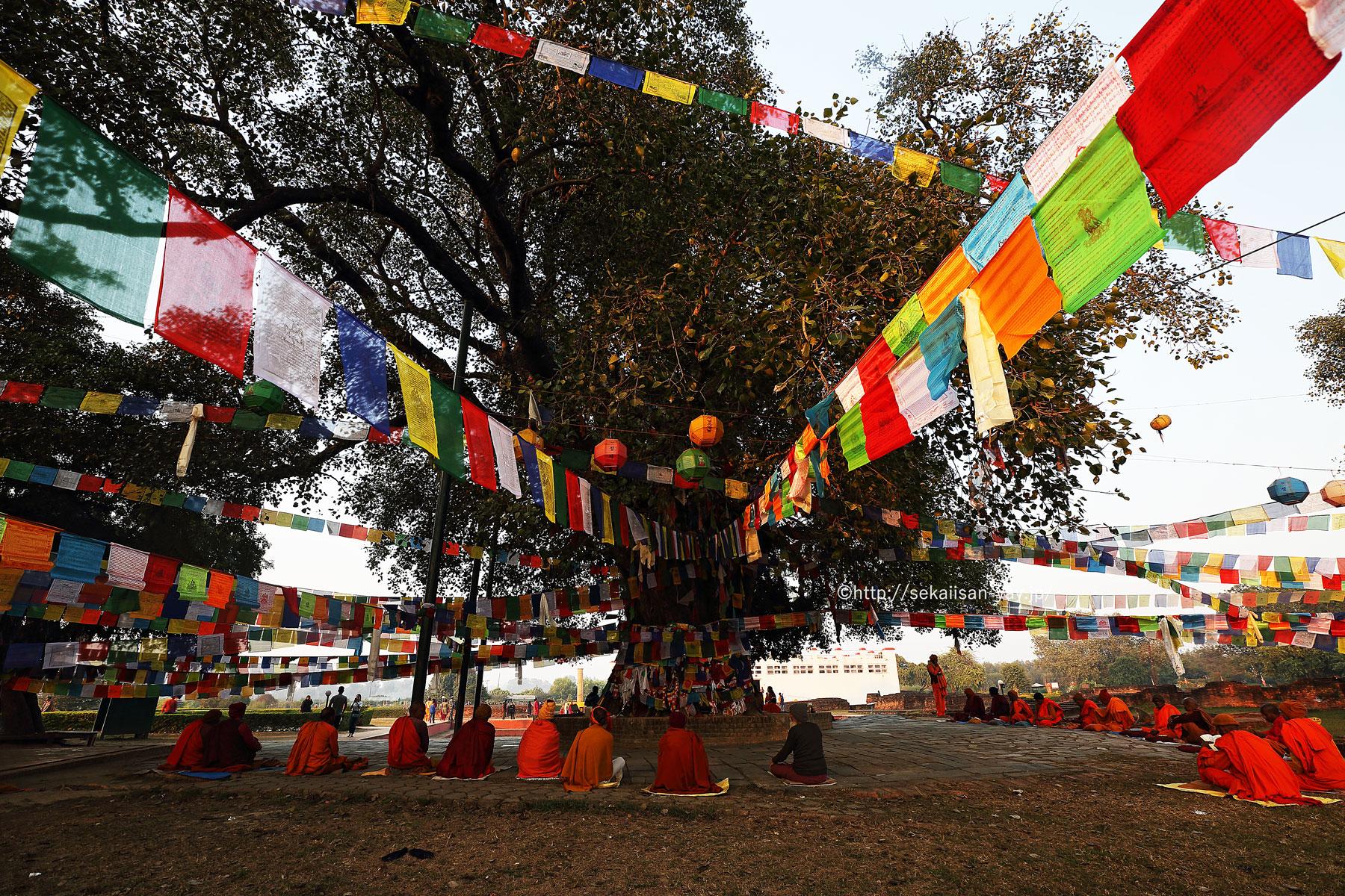 ネパール「仏陀の生誕地ルンビニ」