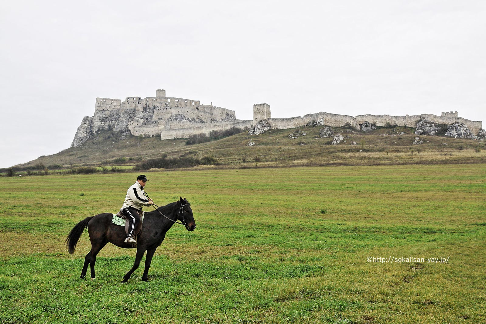 スロバキア「レヴォチャ歴史地区、スピシュスキー城及びその関連する文化財」