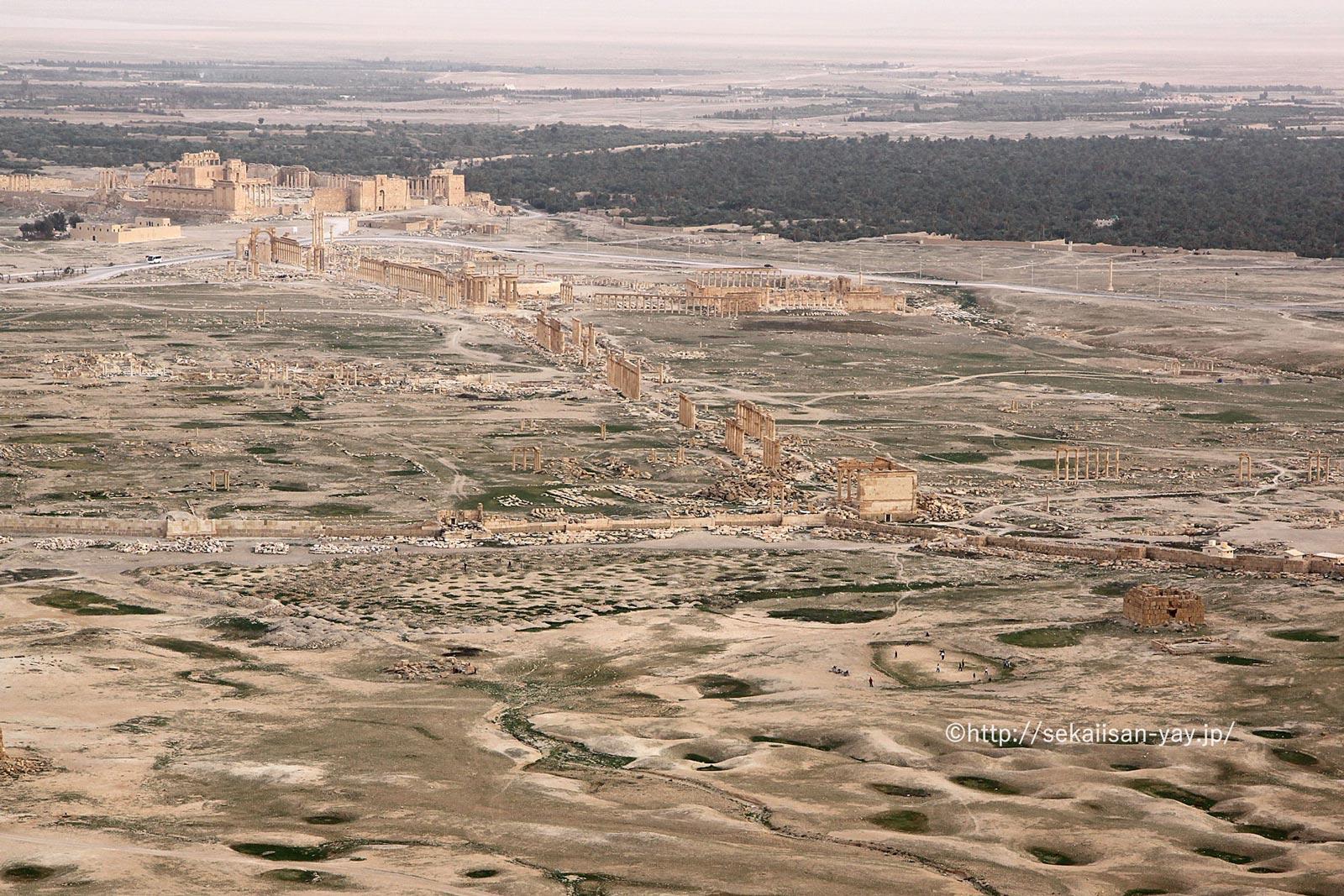 シリア「パルミラの遺跡」